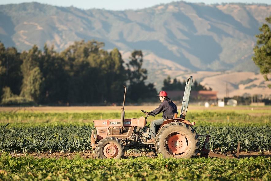 Organic Farm Incubator